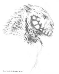 strider-andrea-grassi-uomo-leopardo